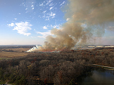 nature, prairie, prairie burn, fire, ecology