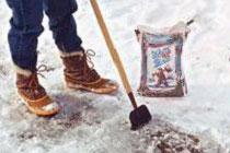 Winter Slips