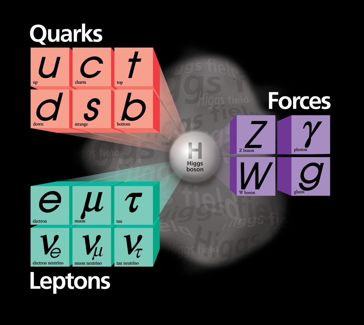 The Standard Model is a triumph of modern physics. With this handful of particles shown here, we can explain all of the matter we have encountered, from atoms to entire galaxies.