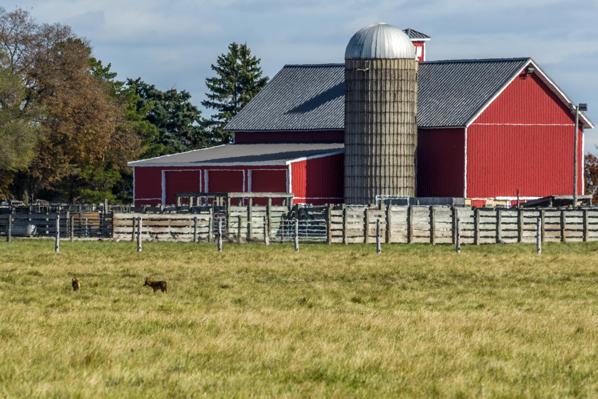 Farm Barn fermilab today