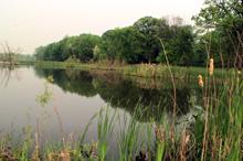 Fermilab Pond
